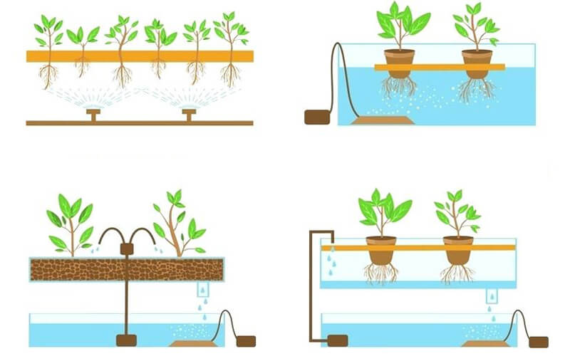 Hydroponic system designs