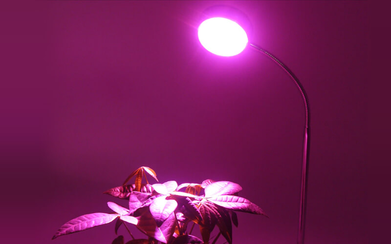 About hydroponic lighting
