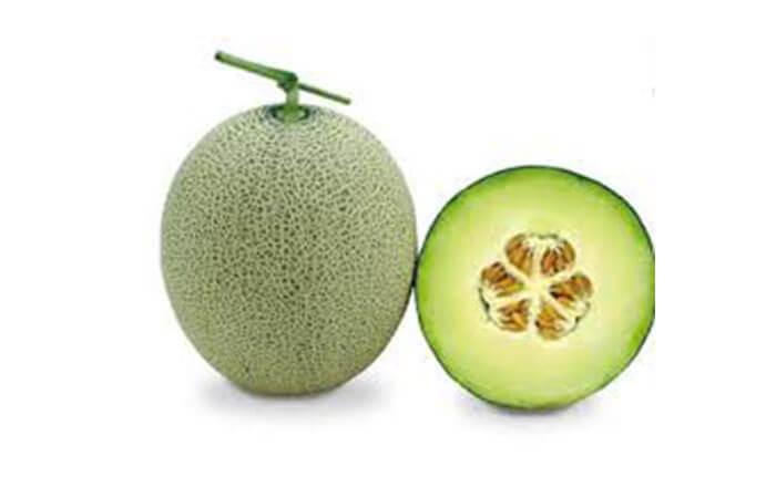 Musk Melon Green